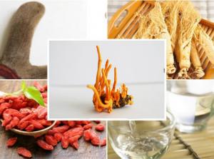 một số nguyên liệu có thể dùng để ngâm cùng đông trùng hạ thảo